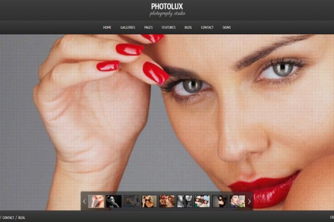Тема Photolux для WordPress на русском с обновлениями и плагинами 1 - kwork.ru