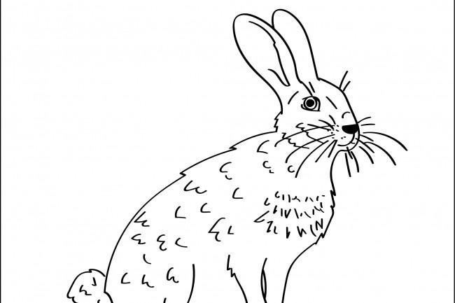 Нарисую любую иллюстрацию в стиле doodle 32 - kwork.ru