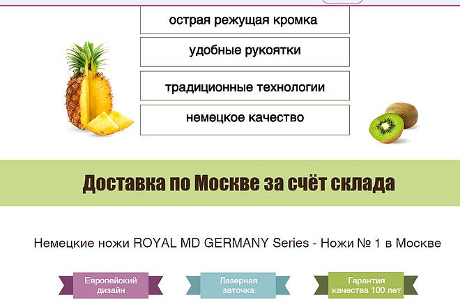 Создание сайта на Wix 8 - kwork.ru
