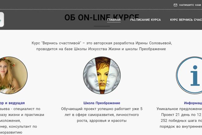 Создание сайтов на конструкторе сайтов WIX, nethouse 45 - kwork.ru