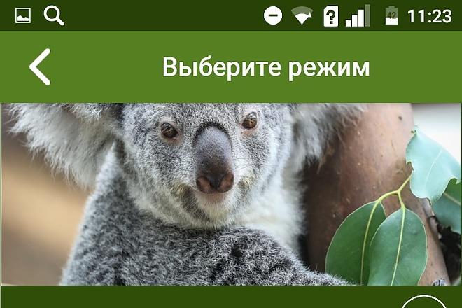 Создам android приложение 13 - kwork.ru