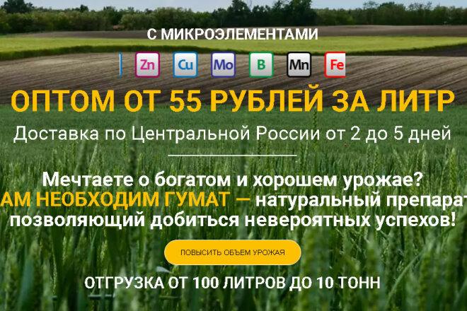 Копирование Landing Page и перенос на Wordpress 21 - kwork.ru