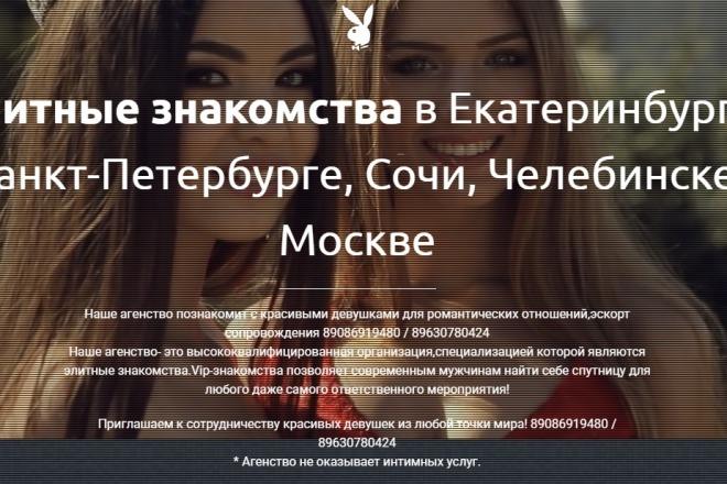 Делаю копии landing page 48 - kwork.ru