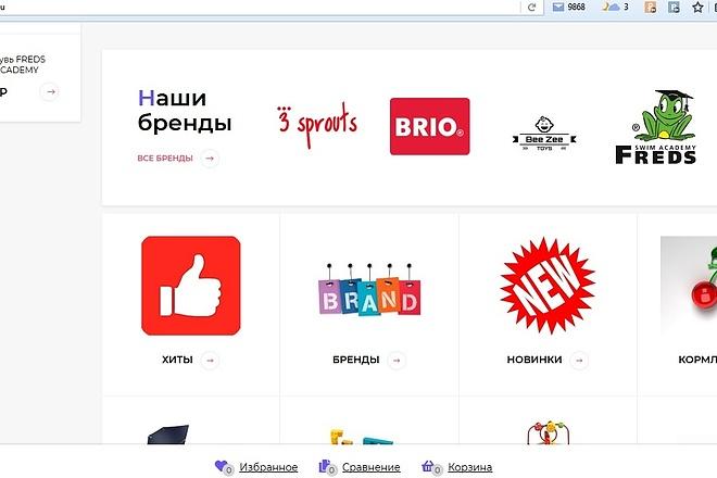 Настройка и установка Webasyst Shop-Script 5,6, 7,8 2 - kwork.ru