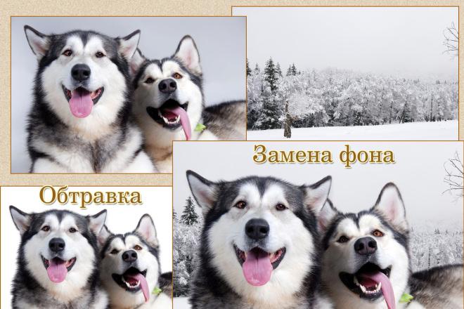 Обработка фото для интернет-магазинов и каталогов 7 - kwork.ru