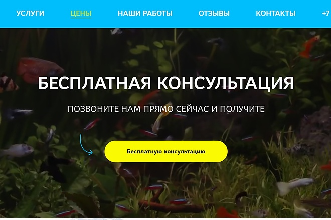 Создание сайта - Landing Page на Тильде 153 - kwork.ru