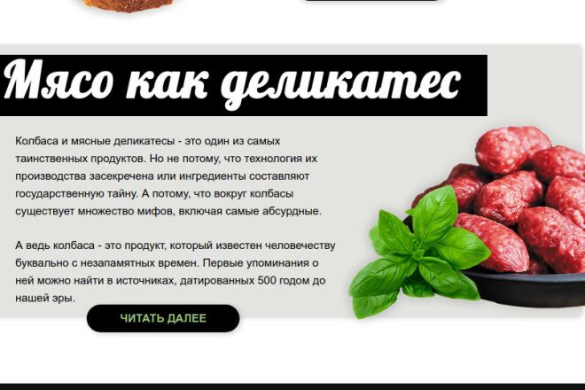 Скопирую страницу любой landing page с установкой панели управления 26 - kwork.ru