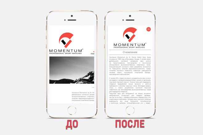 Адаптация сайта под все разрешения экранов и мобильные устройства 41 - kwork.ru