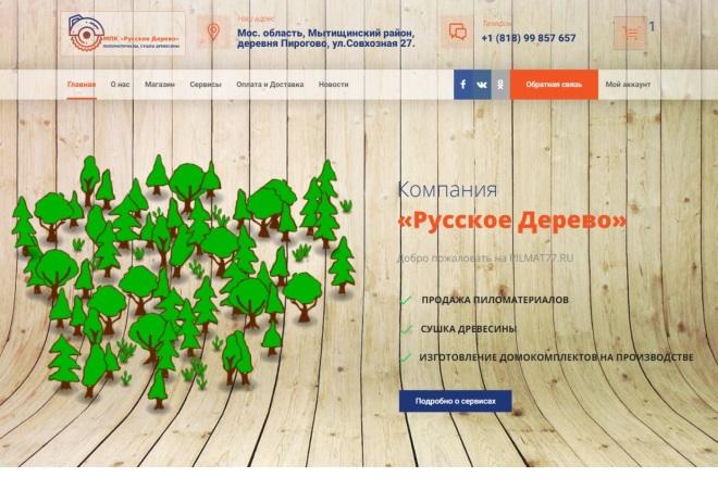 Создание проф. адаптивного интернет магазина на платном шаблоне WP 1 - kwork.ru