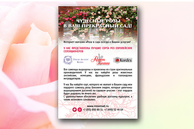 Профессиональный флаер, листовка 1 - kwork.ru
