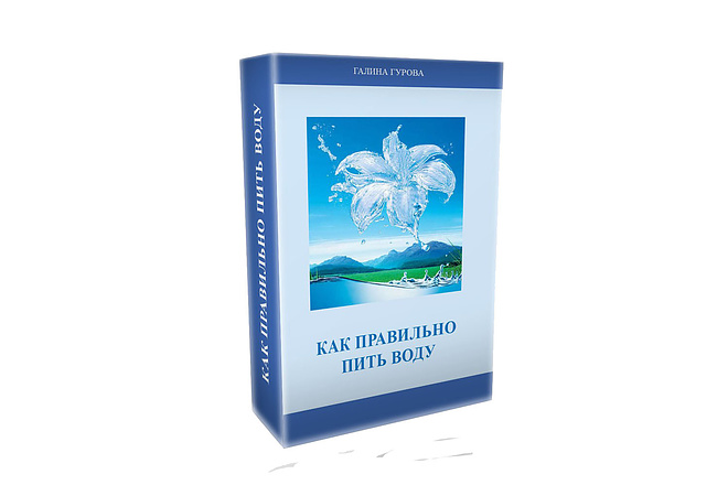 3D обложка и коробка для книги и инфопродукта 1 - kwork.ru