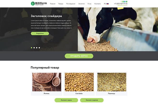 Дизайн страницы сайта 75 - kwork.ru