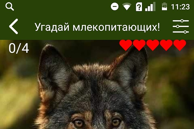 Создам android приложение 12 - kwork.ru