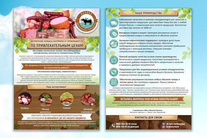 Яркий дизайн коммерческого предложения КП. Премиум дизайн 51 - kwork.ru