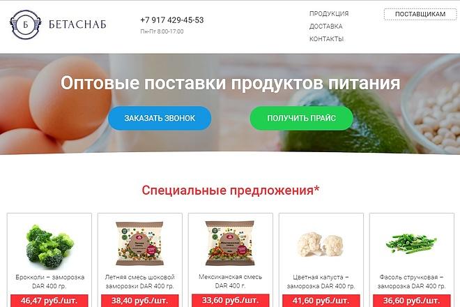 Скопирую Landing Page, Одностраничный сайт 72 - kwork.ru