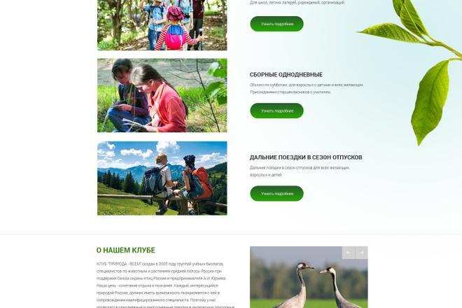Дизайн страницы Landing Page - Профессионально 55 - kwork.ru