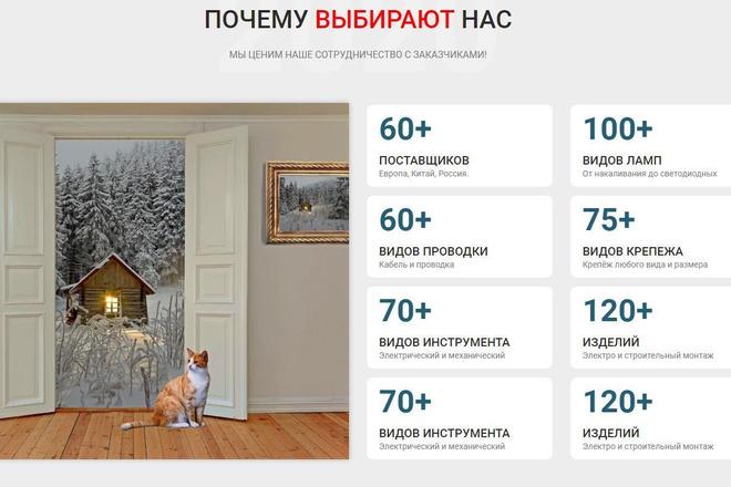 Профессиональный интернет-магазин под ключ премиум уровня 3 - kwork.ru