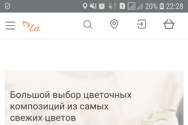 Конвертирую Ваш сайт в Android приложение 37 - kwork.ru