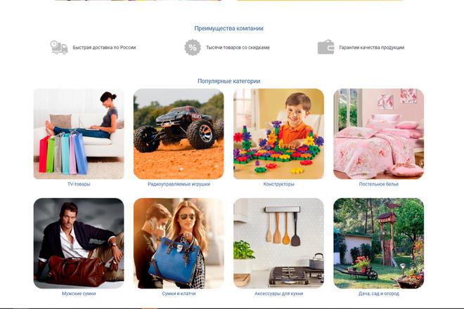 Профессионально создам интернет-магазин на insales + 20 дней бесплатно 65 - kwork.ru