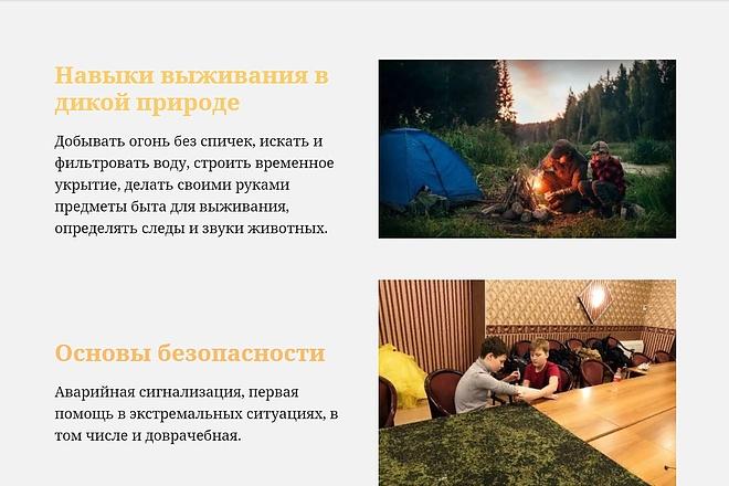 Создание сайта - Landing Page на Тильде 50 - kwork.ru