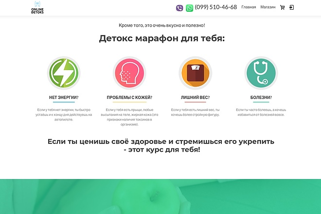 Создание одностраничника на Wordpress 71 - kwork.ru