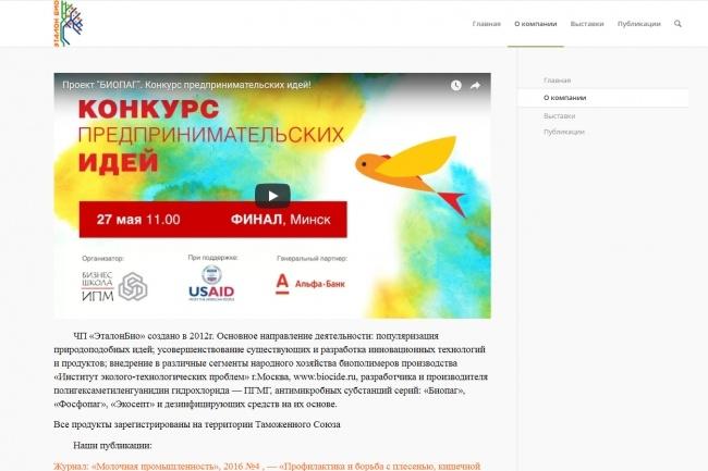Создам современный сайт на Wordpress 16 - kwork.ru