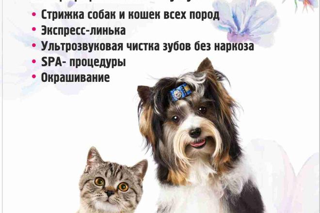Макет листовки, флаера 8 - kwork.ru