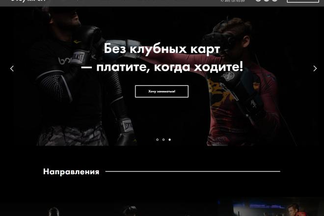 Landing на TILDA 5 - kwork.ru