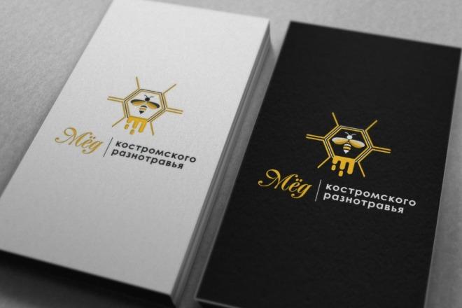 Нарисую удивительно красивые логотипы 25 - kwork.ru