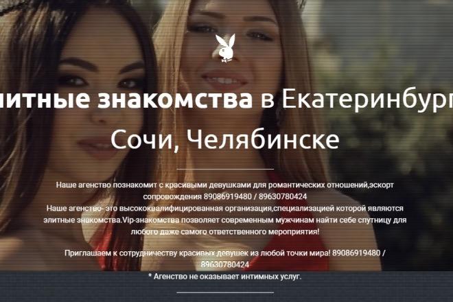 Делаю копии landing page 35 - kwork.ru