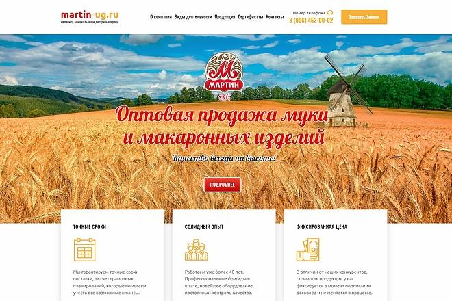 Продающий сайт - Лендинг под ключ, для любых целей 34 - kwork.ru
