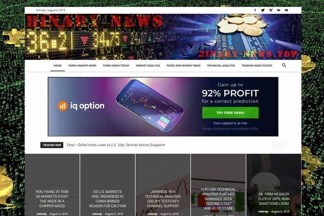 Создам автонаполняемый сайт на WordPress, Pro-шаблон в подарок 21 - kwork.ru