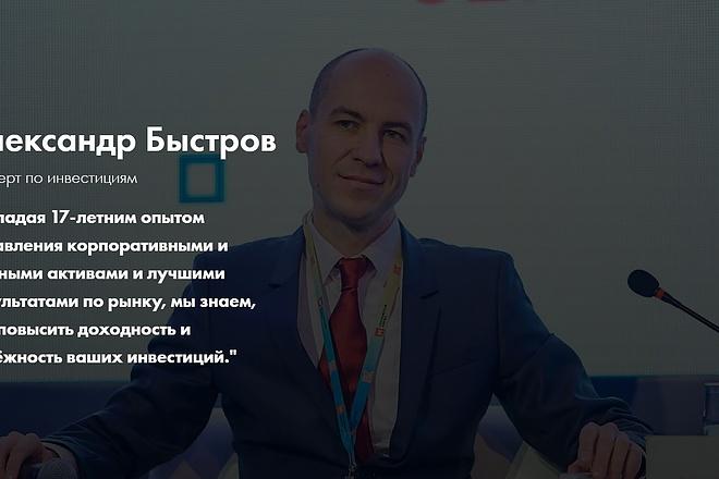 Создание сайта - Landing Page на Тильде 84 - kwork.ru