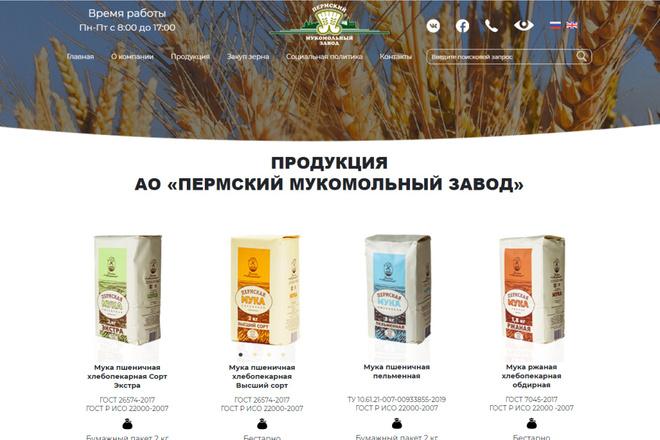 Скопирую почти любой сайт, landing page под ключ с админ панелью 37 - kwork.ru