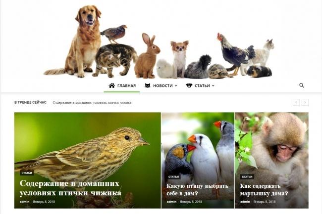 Создам автонаполняемый сайт на WordPress, Pro-шаблон в подарок 32 - kwork.ru