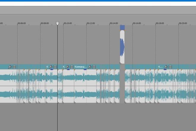 Подгоню звуковые дорожки с голосовыми переводами под любое видео 6 - kwork.ru