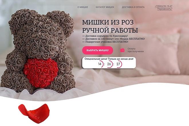 Скопирую Landing Page, Одностраничный сайт 86 - kwork.ru