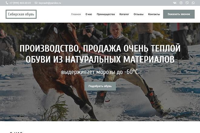 Сайт под ключ. Landing Page. Backend 229 - kwork.ru