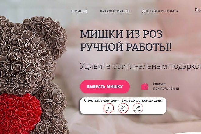 Делаю копии landing page 59 - kwork.ru