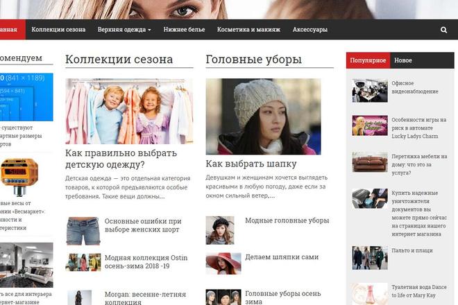 Создание сайта с профессиональным подходом с бонусами и хостингом 2 - kwork.ru