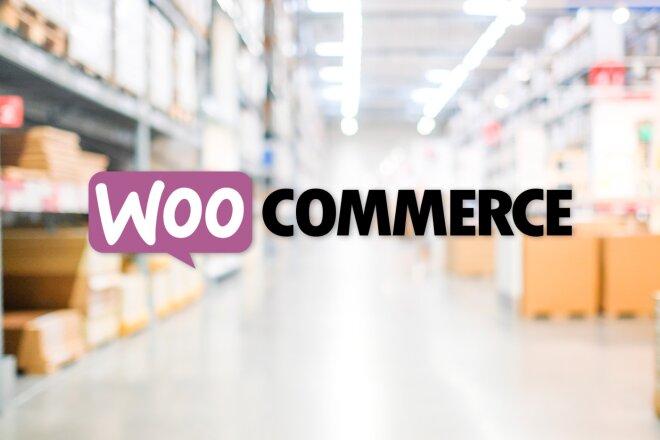 50 премиум тем WP для интернет-магазина на WooCommerce 12 - kwork.ru