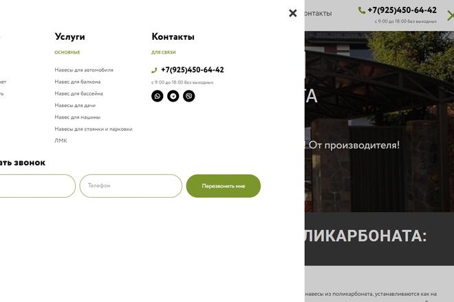 Сделаю классный Лендинг на Elementor Pro 31 - kwork.ru
