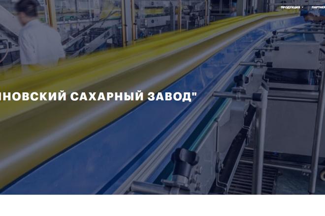 Скопирую почти любой сайт, landing page под ключ с админ панелью 41 - kwork.ru