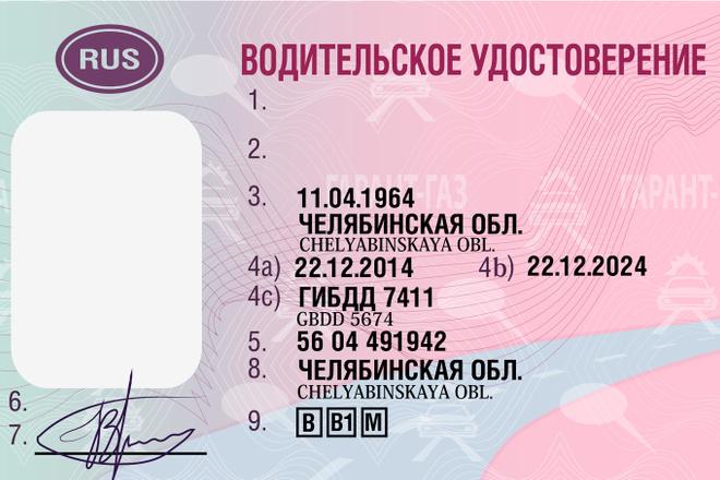 Перевод растрового фото изображения в векторное 8 - kwork.ru