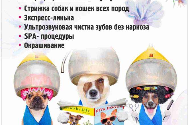 Макет листовки, флаера 7 - kwork.ru