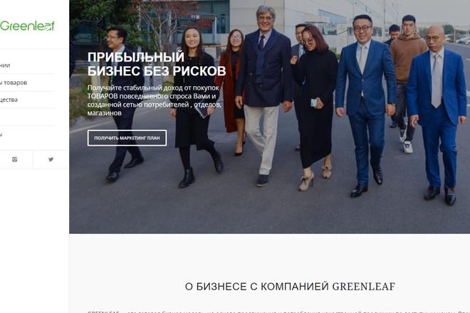Создам современный адаптивный landing на Wordpress 9 - kwork.ru