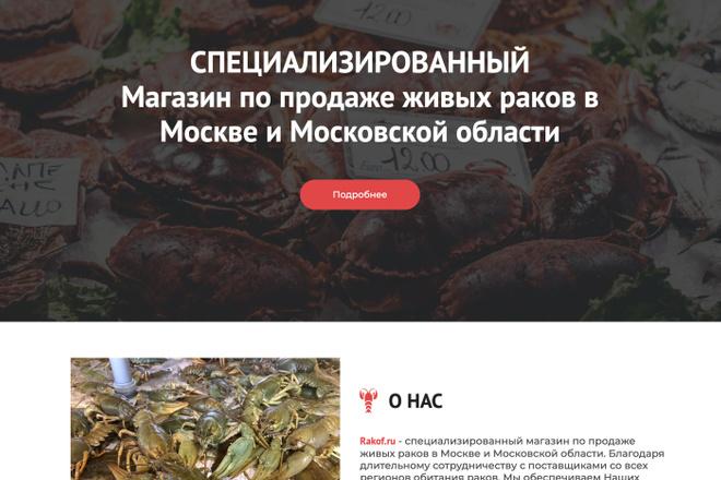 Сайт под ключ. Landing Page. Backend 57 - kwork.ru