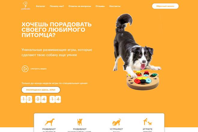 Создание современного лендинга на конструкторе Тильда 48 - kwork.ru