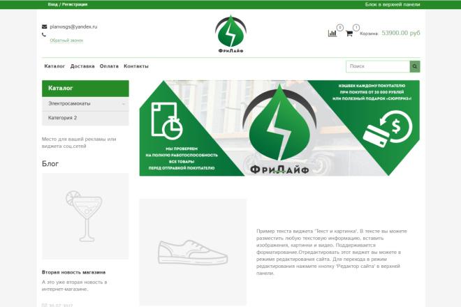 Профессионально создам интернет-магазин на insales + 20 дней бесплатно 12 - kwork.ru