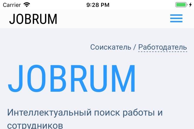 Конвертация сайта в приложение 1 - kwork.ru